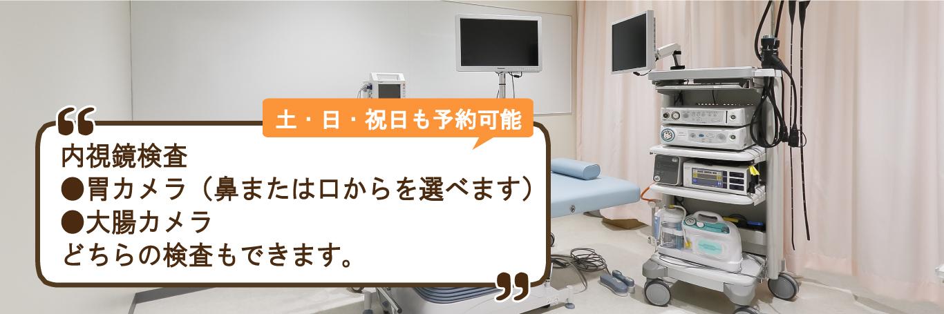 内視鏡検査胃カメラ(鼻または口からを選べます)大腸カメラどちらの検査もできます。
